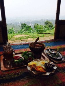Indonesian food and view